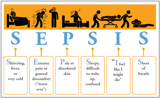 sepsis in the ed Surviving sepsis campaign recommendation: administration of effective  intravenous antimicrobials within the first hour of recognition of septic shock ( grade 1b).