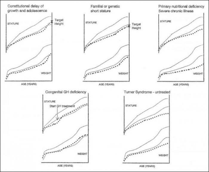 egovernment history causes and trends Though a definitive explanation for how autism occurs is not yet understood, the best evidence available today appears to support a diathesis-stress model of causation diathesis is a fancy work for vulnerability diathesis-stress theories of illness basically suggest that it takes two events to cause an illness to occur.